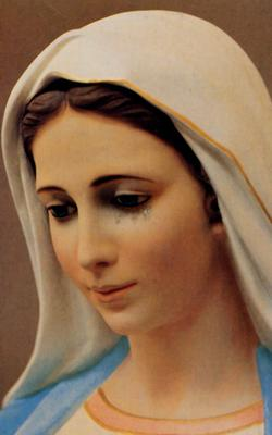 Mary Our Mother Intercede for us
